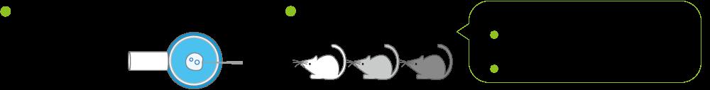ゲノム編集技術を用いた遺伝子改変マウス・ラットの作出