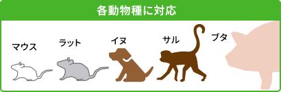 各動物種に対応