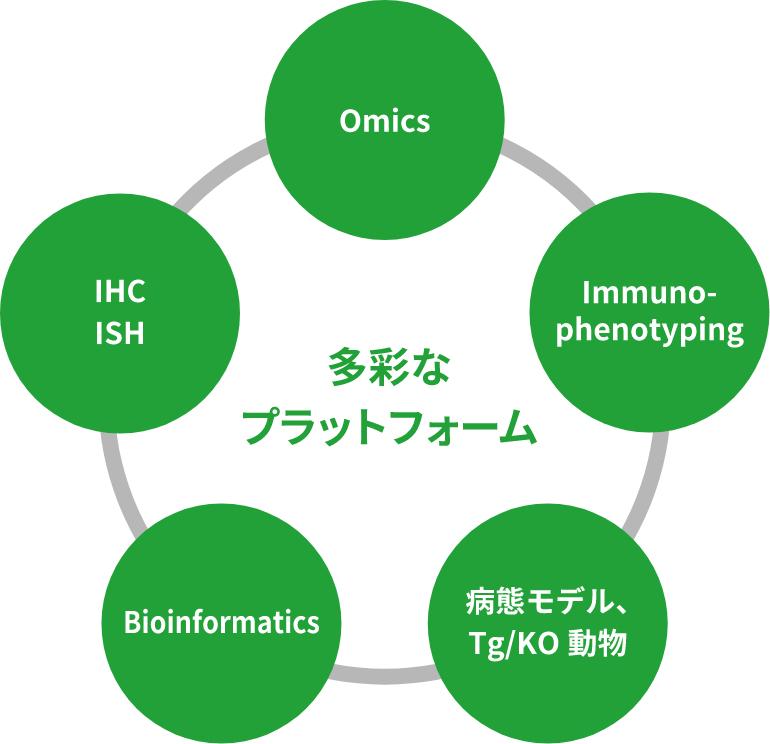 多彩なプラットフォーム Omics IHC ISH Bioinformatics 病態モデル、Tg/KO動物 Immuno- phenotyping