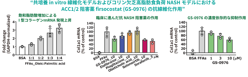 """""""共培養 in vitro 線維化モデルおよびコリン欠乏高脂肪食負荷 NASHモデルにおけるACC1/2阻害薬 firsocostat (GS-0976) の抗線維化作用"""""""