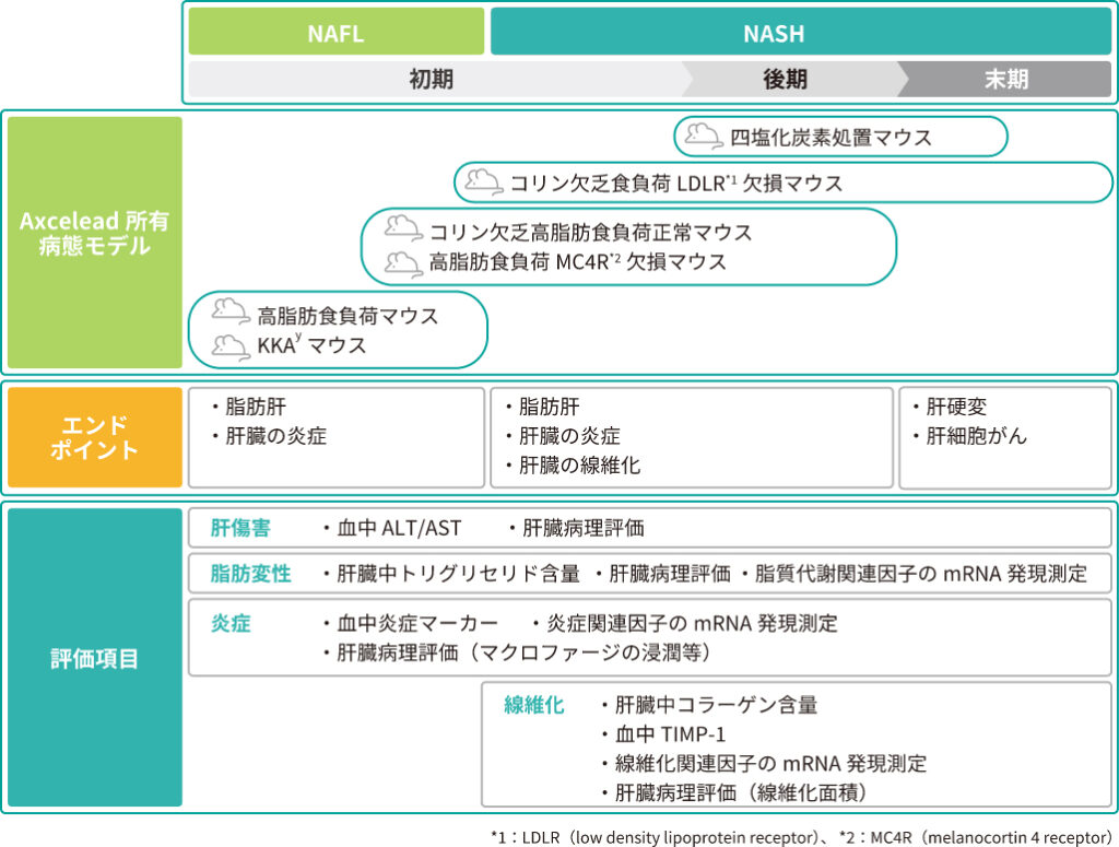 Axcelead所有のNAFL/NASHモデルと評価系