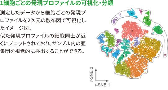 細胞ごとの発現プロファイルの可視化・分類